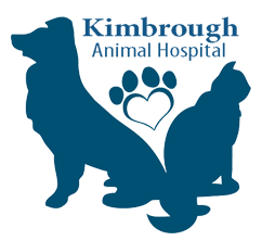 Home Animal Hospital In Longview Tx Longview Tx Veterinarians